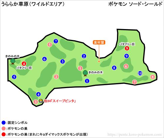 ポケモンソード・シールド うららか草原 (ワイルドエリア) マップ