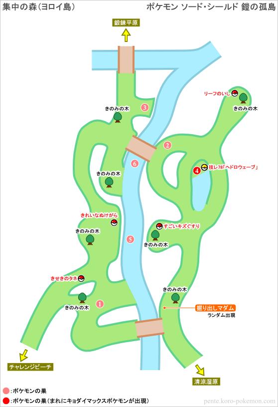 ポケモンソード・シールド 集中の森 (ヨロイ島) マップ