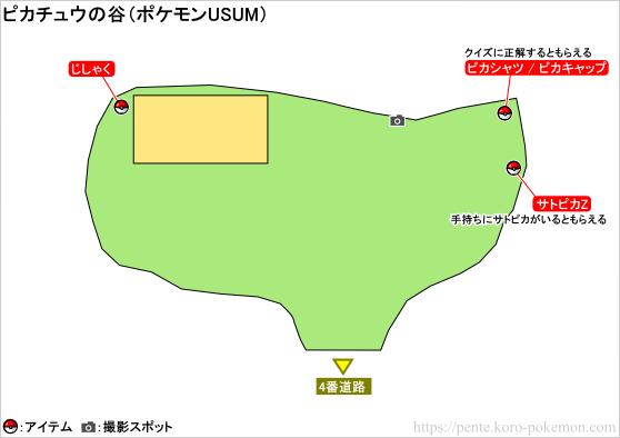 ポケモンウルトラサン・ウルトラムーン ピカチュウの谷 マップ